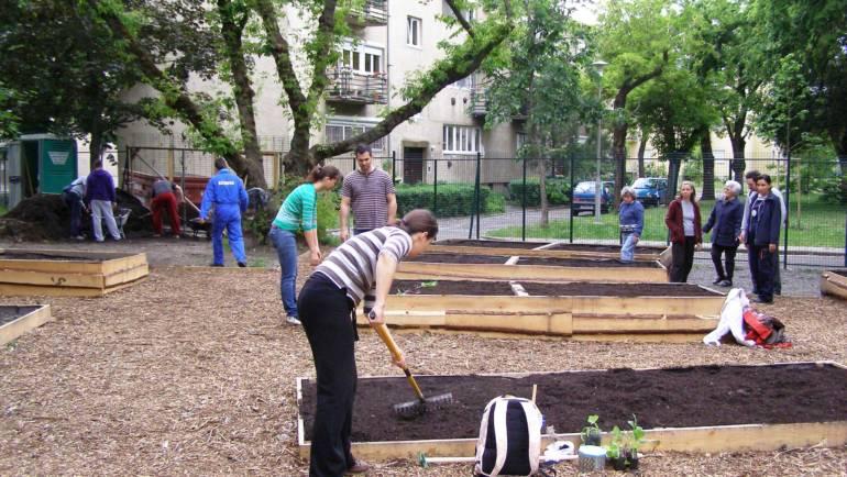 Segítő kezek a Kispesti Zengő Kert indulásánál