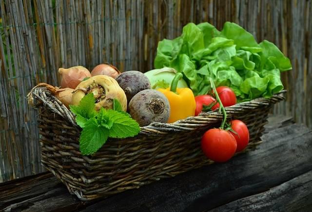 Bio-, vega-, öko-, és reform – rendet rakunk a zűrzavarban